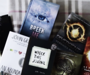 wreck this journal, divergent, and books image