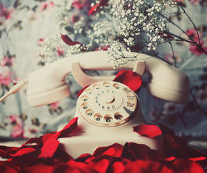 vintage, rose, and telephone image