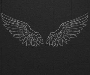 black, angel, and wings image