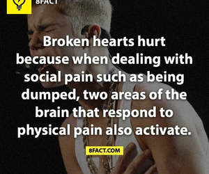 broken heart, justin bieber, and pain image