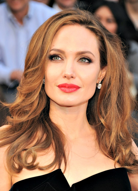 Accept. angelina jolie hollywood actress opinion