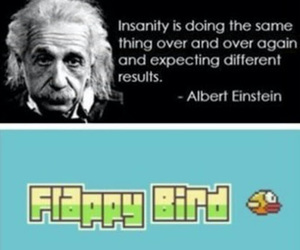 flappy bird, funny, and quote image