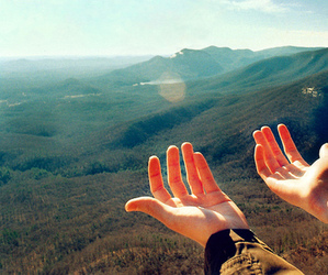 hands and nature image