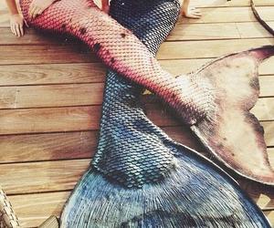 mermaid, pink, and blue image