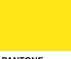 Image About Colors In Pantone By On We Heart It