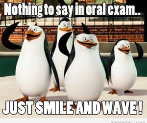 exam, funny, and smile image