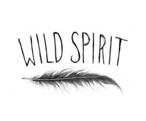 quote, wild, and life image