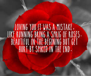hurt, roses, and mistake image