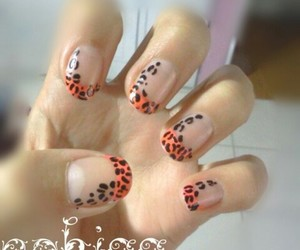 animal print, black and pink, and girl image