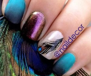 feather, nail art, and nail polish image