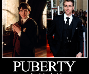 harry potter, puberty, and neville longbottom image