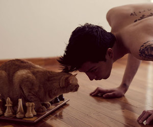 indie, inspiration, and boy and cat image