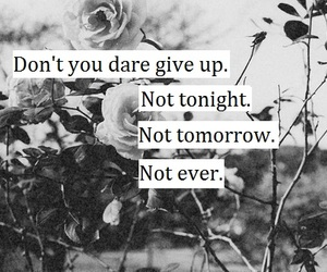 quote, black and white, and give up image
