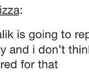zayn malik, tumblr text post, and one direction image