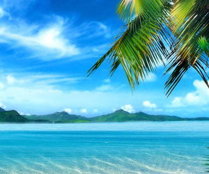 beach, beauty, and love image