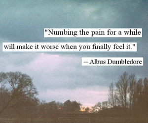 harry potter, pain, and quote image