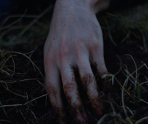 grass, hand, and nature image