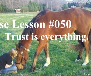 horse and trust image