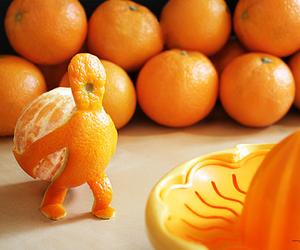 orange, fruit, and funny image