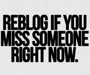 love, reblog, and miss image