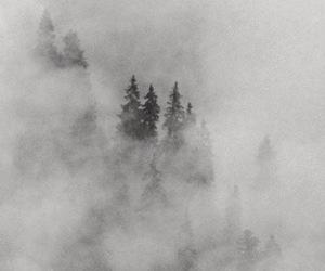 header, fog, and twitter image