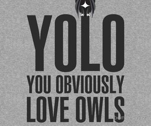 owl, quote, and yolo image