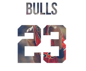 23, bulls, and jordan image