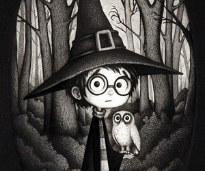 harry potter, owl, and magic image