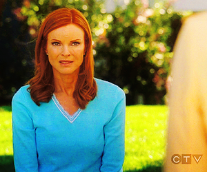 Desperate Housewives and bree hodge image