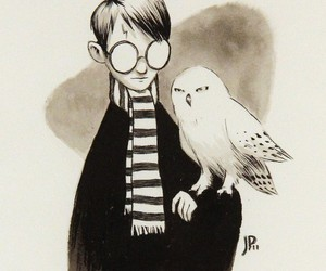 harry potter, art, and hedwig image