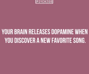 psychology, brain, and dopamine image