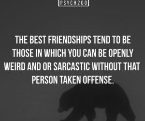 friendship, psychology, and sarcastic image