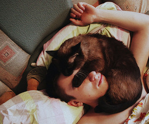 cat, boy, and sleep image