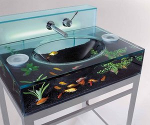 fish, sink, and aquarium image
