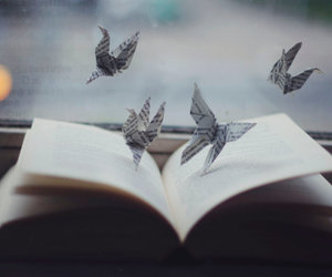 bird, book, and freedom image