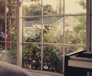 window, nature, and flowers image