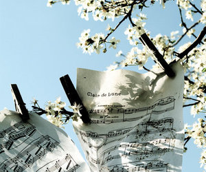 flowers, music, and clair de lune image