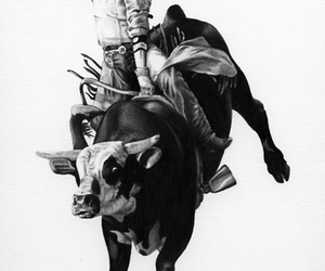 black and white, bull, and cowboy image