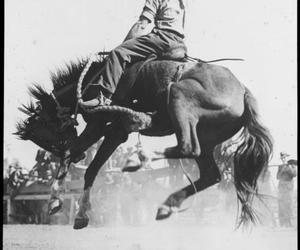 black and white, cowboy, and vintage image