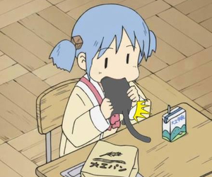 mio, cute, and cat image