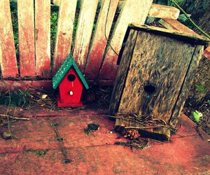 bench and bird house image