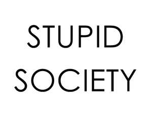 society, stupid, and quote image