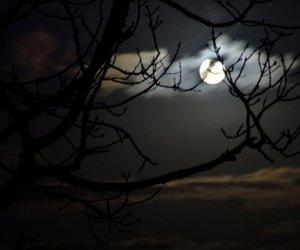 moon, dark, and Darkness image