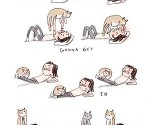cat, sport, and workout image