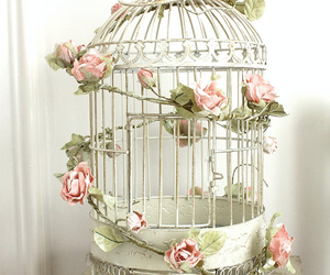 bird, cage, and girl image
