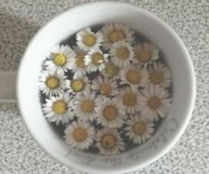 cup of tea, jasmine, and tumblr image