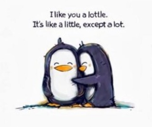 ilikeyou, pinguin, and bestfriends image