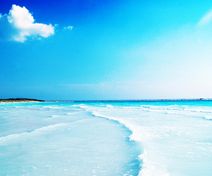 blue, beach, and summer image