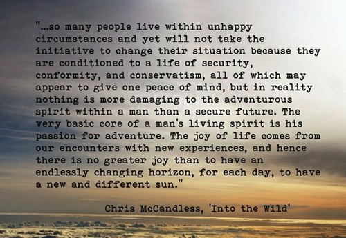 Into The Wild Book Quotes Fascinating 25 Images About Into The Wild On We Heart It  See More About Into