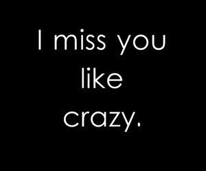 love, crazy, and miss image